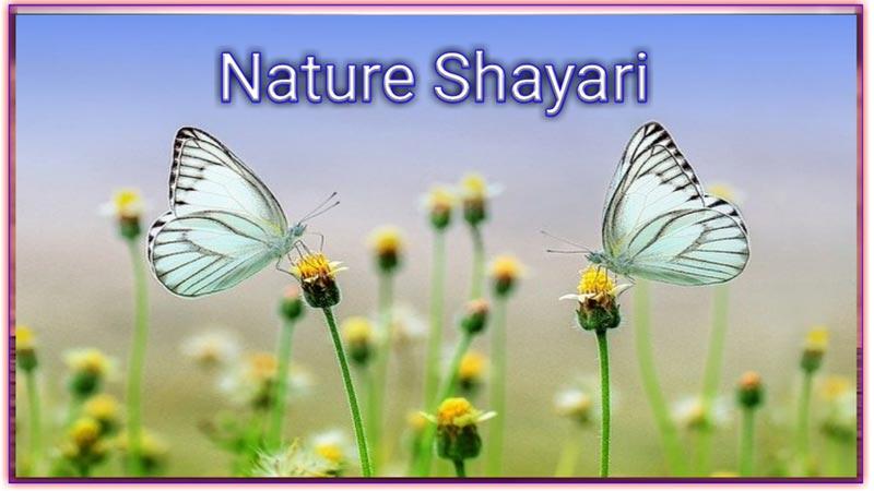 Shayari on Nature in hindi & English