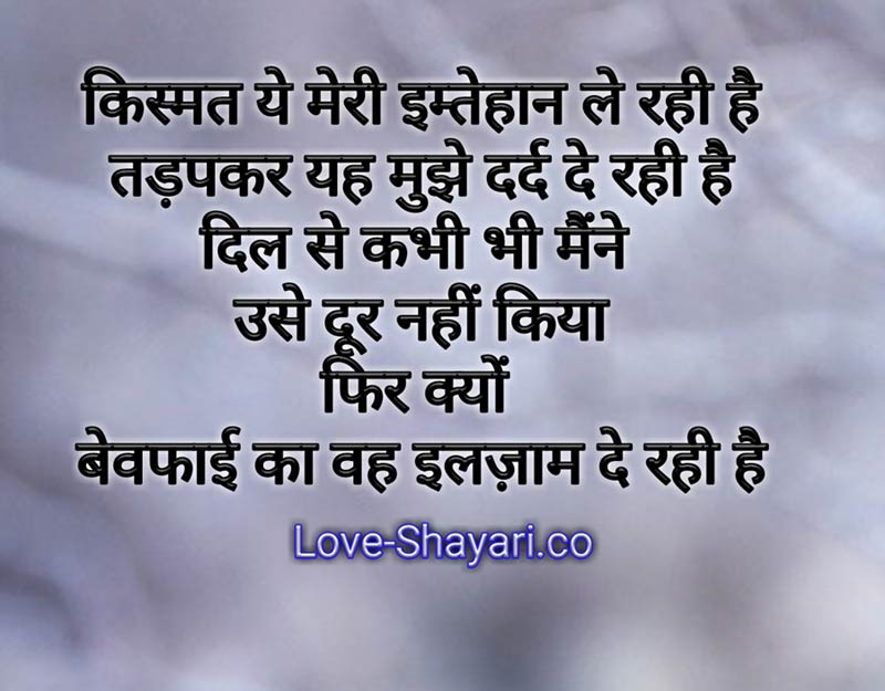 Shayri photo