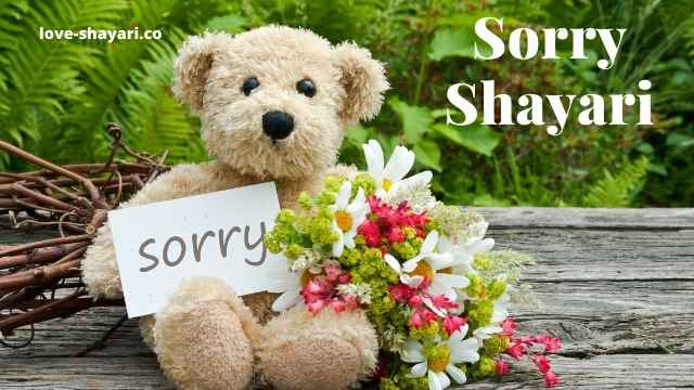 Sorry shayari,