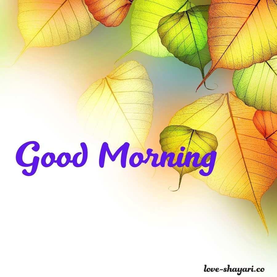 good morning photo shayari